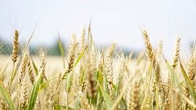 Foto de A agricultura nacional no contexto do Green Deal: menos fertilizantes minerais mas mais pesticidas face à média da UE - 2020