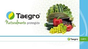 Foto de Syngenta apresenta Taegro® o novo biofungicida para vinha e hortícolas