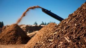 Foto de Biomassa: ENERAREA reforça a sua estratégia energética com projetos na área florestal
