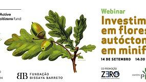 Foto de Webinar debate investimento em floresta autóctone em minifúndio