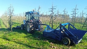 Foto de Ação de demonstração de máquina para remoção de frutos do solo em pomares a 8 de setembro