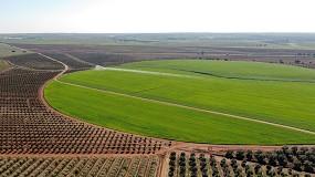 """Foto de Mesa redonda discute 'Alqueva: criar valor com Agroindústria"""""""