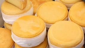 Foto de 12°Concurso de Queijos de Portugal vai eleger os melhores queijos portugueses