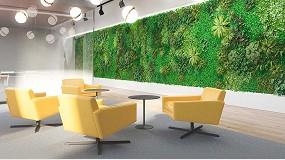 Foto de La biofilia, la alternativa del interiorismo para diseñar espacios en mimetización con la naturaleza