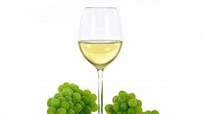 Foto de O vinho de Portugal