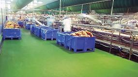 Foto de La contaminación en pavimentos para la alimentación: ¿Cómo conseguir un pavimento higiénico?