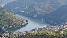 Foto de 'A Sustentabilidade no Alto Douro Vinhateiro' em debate a 26 de outubro