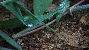 Foto de Agrogarante promove webinar sobre gestão da água na agricultura