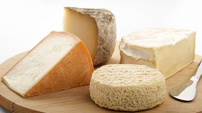 Foto de La DOP Queso Manchego acapara el 84% de la producción de figuras de calidad con leche de oveja pura