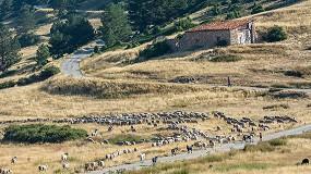 Foto de La ganadería extensiva como alternativa clave para proteger al medio ambiente