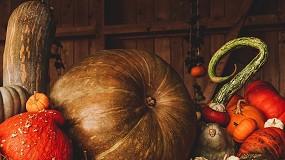 Foto de Fundão promove outono com Festival Gastronómico