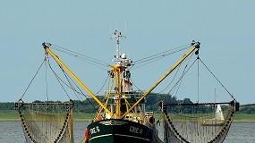 Foto de Expo Fish Portugal realiza-se a 16 e 17 de novembro