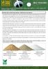 Nitrato Potásico o Multiverdo para greens