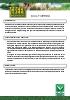 Multigreen Verdo: Nitrato potásico miniprill