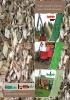 Farmi: maquinaria forestal