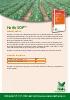 Sulfato potásico soluble: Haifa SOP