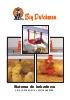 Sistema de bebederos: bebederos de tetina y de campana para la cría-recría y la avicultura pesada.