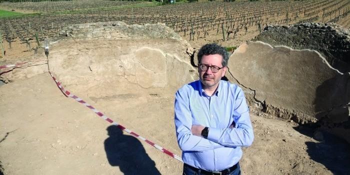 Entrevista a Joan Miquel Canals, presidente de la Associació Catalana d'Enòlegs