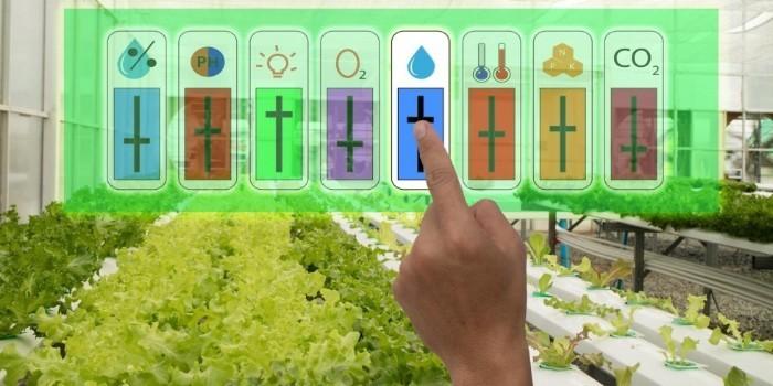 Sensores de bajo coste aplicados al control de los cultivos