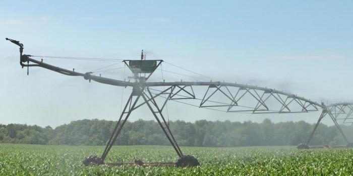 Efecto de la frecuencia del riego por aspersión con cobertura total sobre el rendimiento del maíz