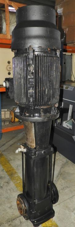 Bomba centrífuga vertical