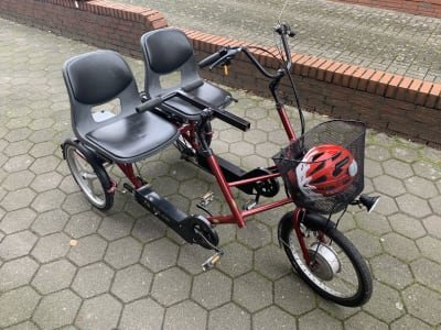 Roll-tech E-Bike Parallel Tandem Tricycle