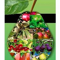 Herbicida para el control de malas hierbas de hoja ancha