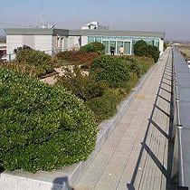 Sistema de cubierta verde