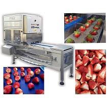 Máquina para la extracción de pedúnculo y corte de las fresas