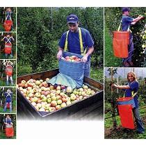 Recolectores de fruta