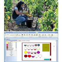 Soluciones informáticas para bodegas y viñedos
