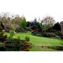 Tierra de jardín