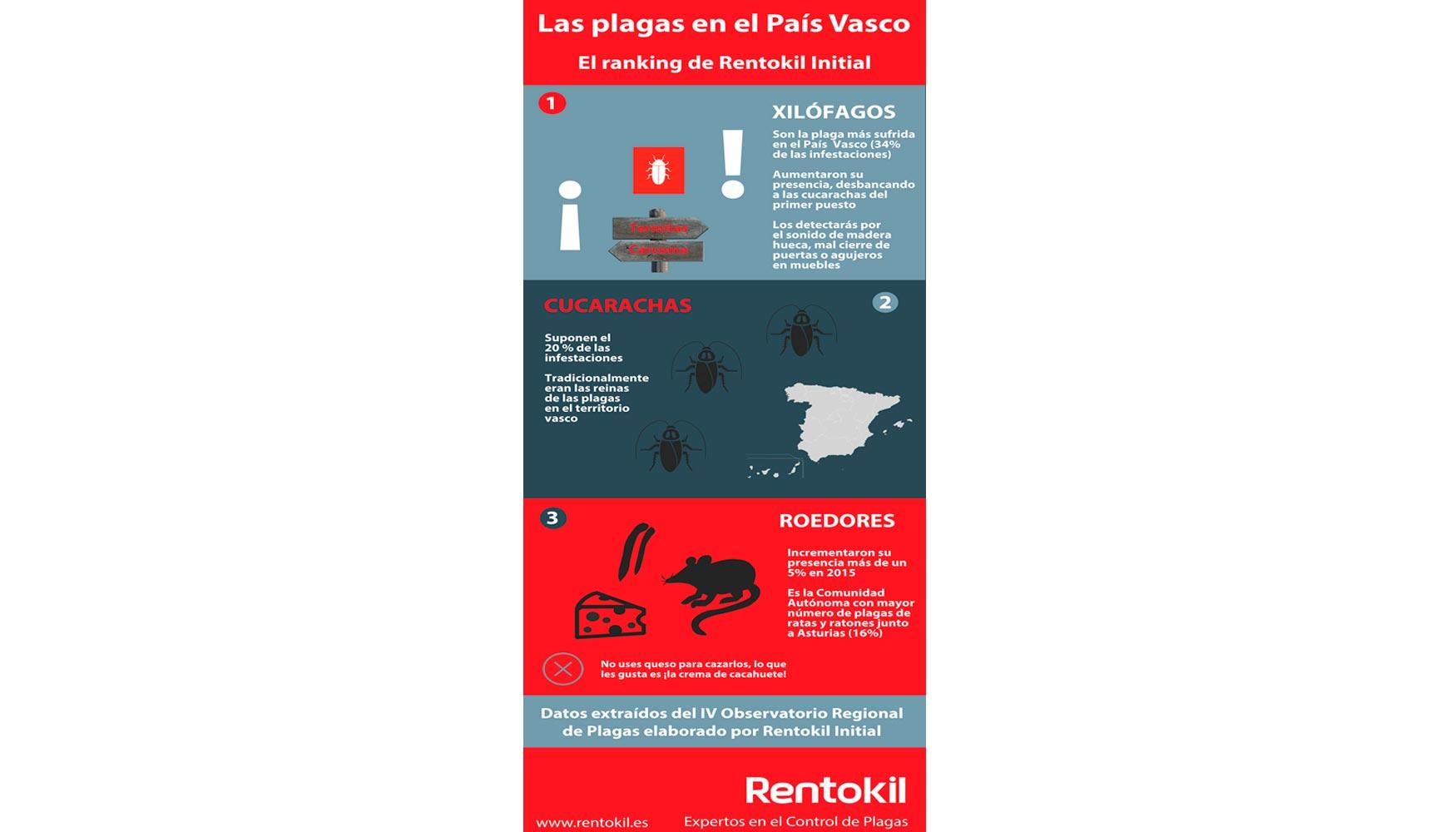 Las Termitas Y La Carcoma Superan A Las Cucarachas Como La Plaga  # Muebles Reto Asturias