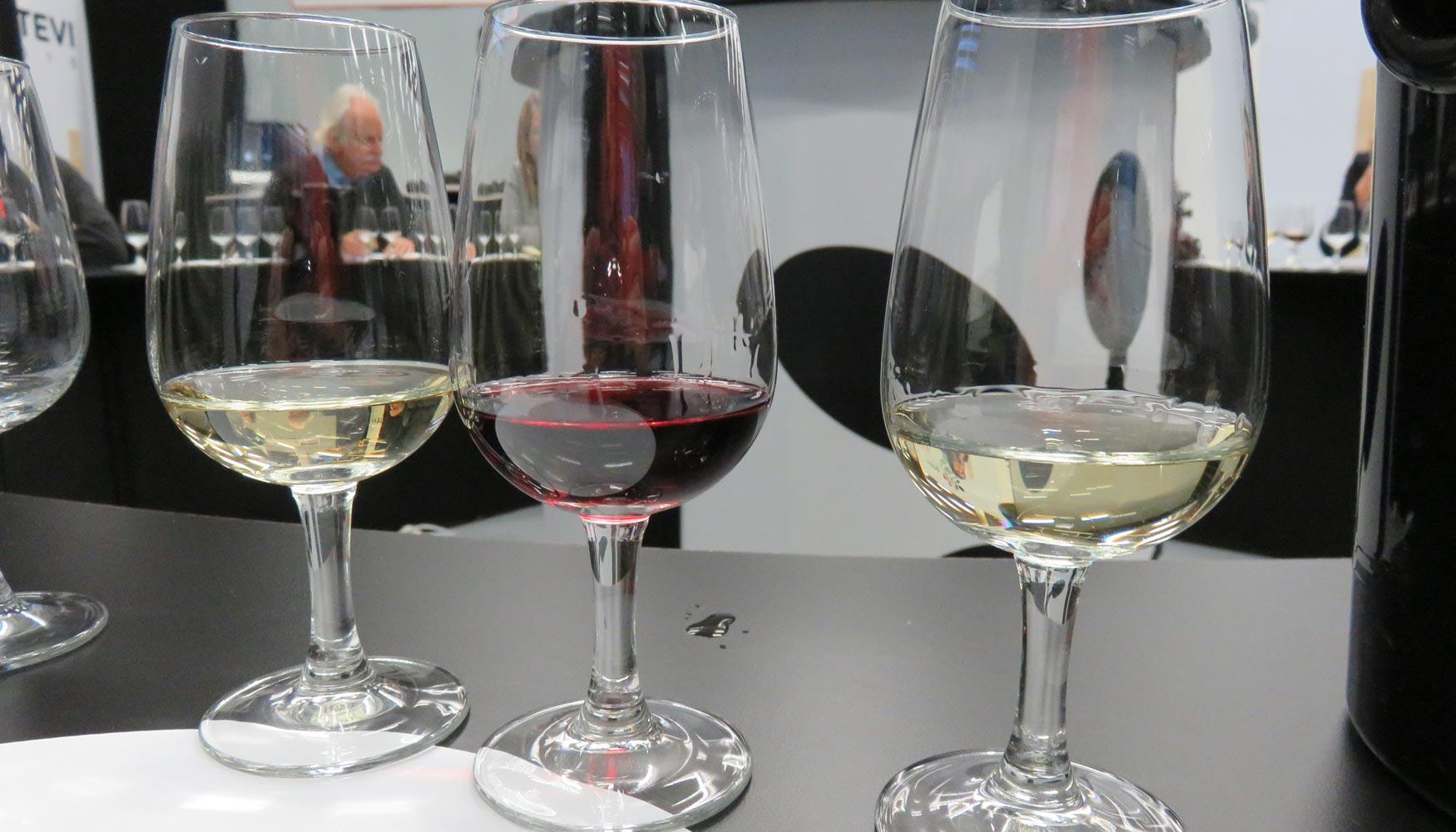 diabetes tipo 2 y vino blanco