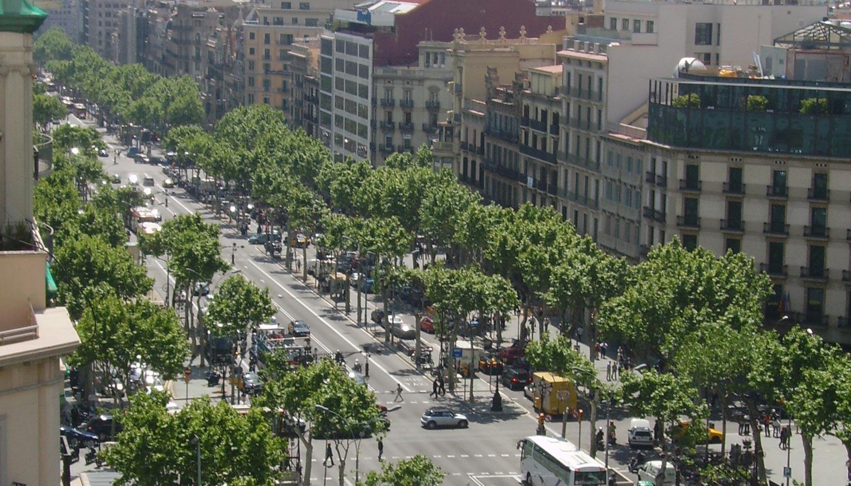 La contrataci n de oficinas en barcelona se ralentiza por for Oficinas de allianz en madrid