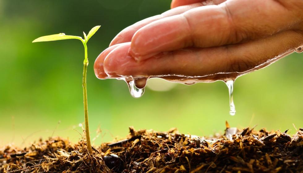 Caracterizaci n hidr ulica del suelo implicaciones agron micas y ambientales grandes cultivos - Cojines gigantes para el suelo ...