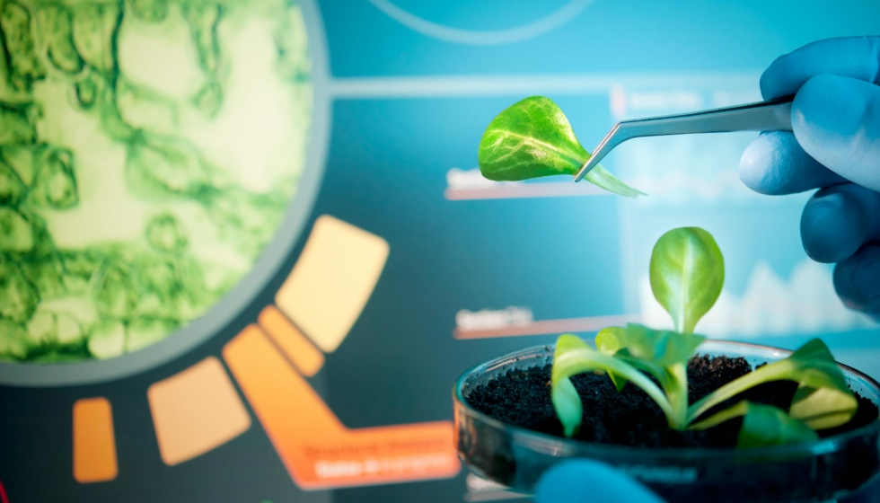 La biotecnología, entre los sectores que crecen en