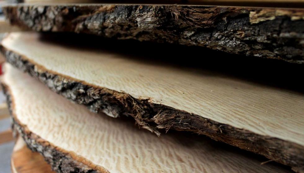Maderas y chapas blanquer ofrece nuevos formatos en decoraci n madera - Maderas y chapas ...