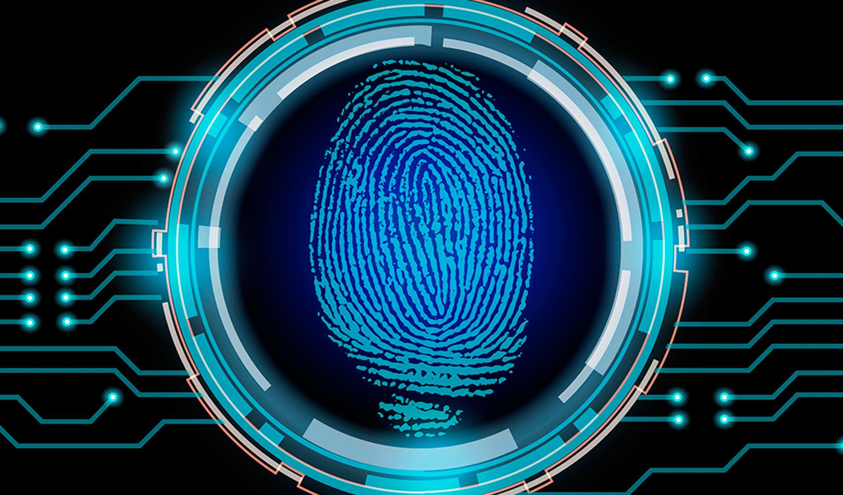 Exploración horizontal y vertical de la ciberseguridad y privacidad ...