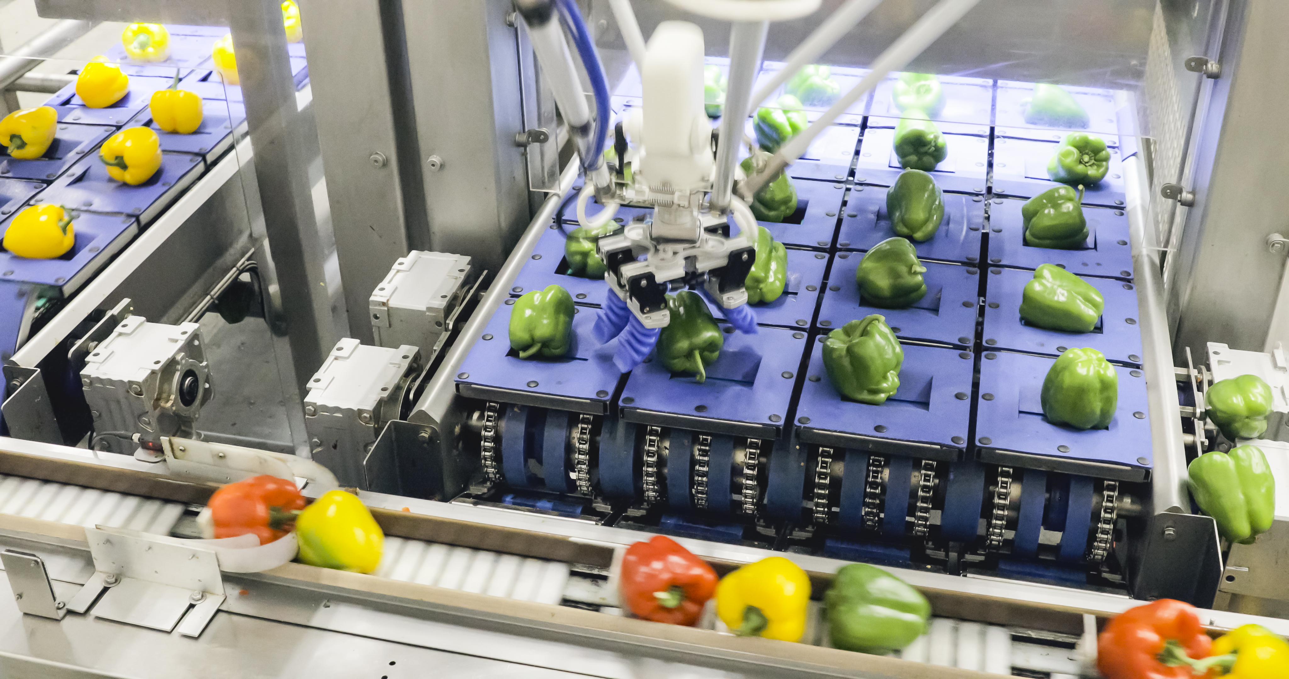 Robots en paralelo y un sistema de visión aceleran la línea de envasado de pimientos