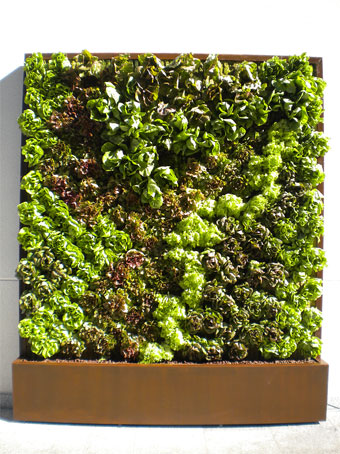 Jardines verticales modulares nuevas tendencias en for Jardines verticales precios