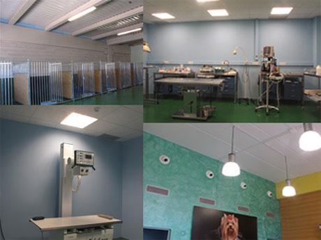 Aspitech ingenier a ha dirigido y realizado el proyecto de - Proyecto clinica veterinaria ...