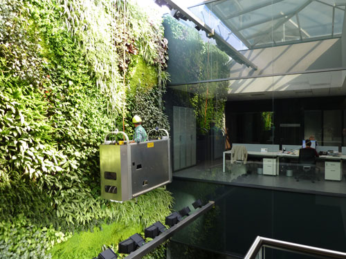 Una selva urbana en la oficina lo ltimo en jardines - Material para jardin vertical ...