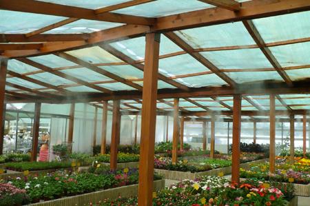 Sistemas de pulverizaci n de agua en invernaderos y for Vivero e invernadero