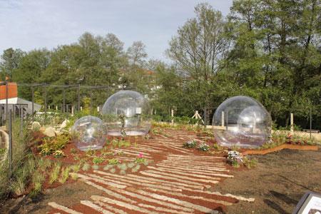 El festival internacional de xardins de allariz afianza el for Jardineria y paisajismo fotos