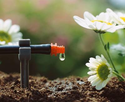 El sistema riego micro drip system classic no desperdicia for Sistema de riego por aspersion para jardin