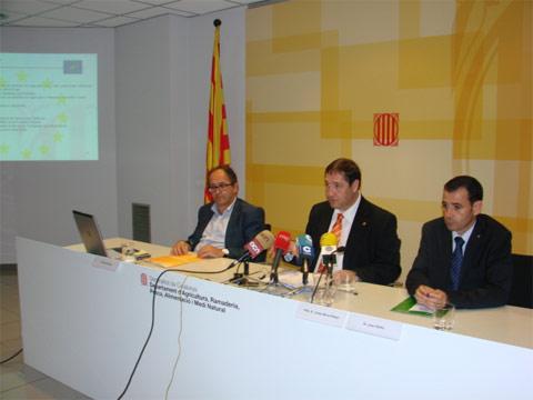 Catalunya crea una oficina virtual per tecnificar la for Oficina virtual generalitat