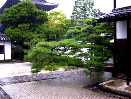 El roji un jard n creado para la ceremonia del t for Jardin japones piscina
