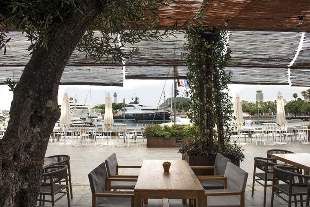 Restaurante Brisa, la nueva joya de Palau de Mar diseñado por el arquitecto Dani Freixes