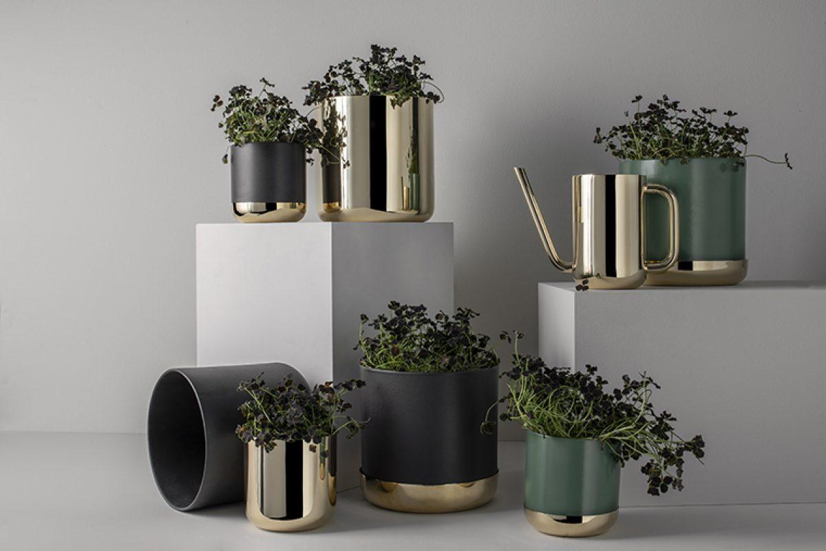 Nature Collection de Ilse Crawford para Skultuna , el elegante encanto de cuidar tus plantas